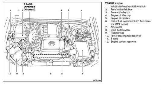 nissan diagrams Can't locate the dipstick for transmission