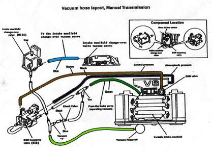 Serpentine Belt Diagram For A 1988 Mustang Gt Solved Fixya