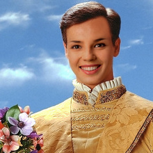 'prince Charming' Face In Hole Photo Montage Online