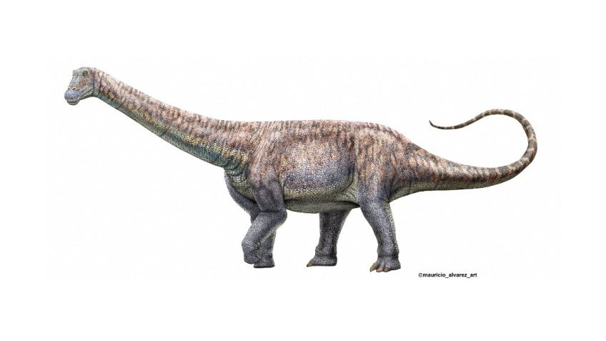 Is It Possible to Recreate Dinosaurs From Their DNA Like Jurassic Park?