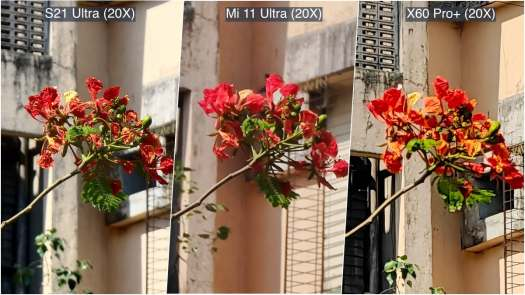 camera comparison daylight 20x 1 www