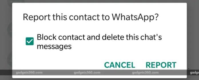 whatsapp invidual reporting layout 1 WhatsApp