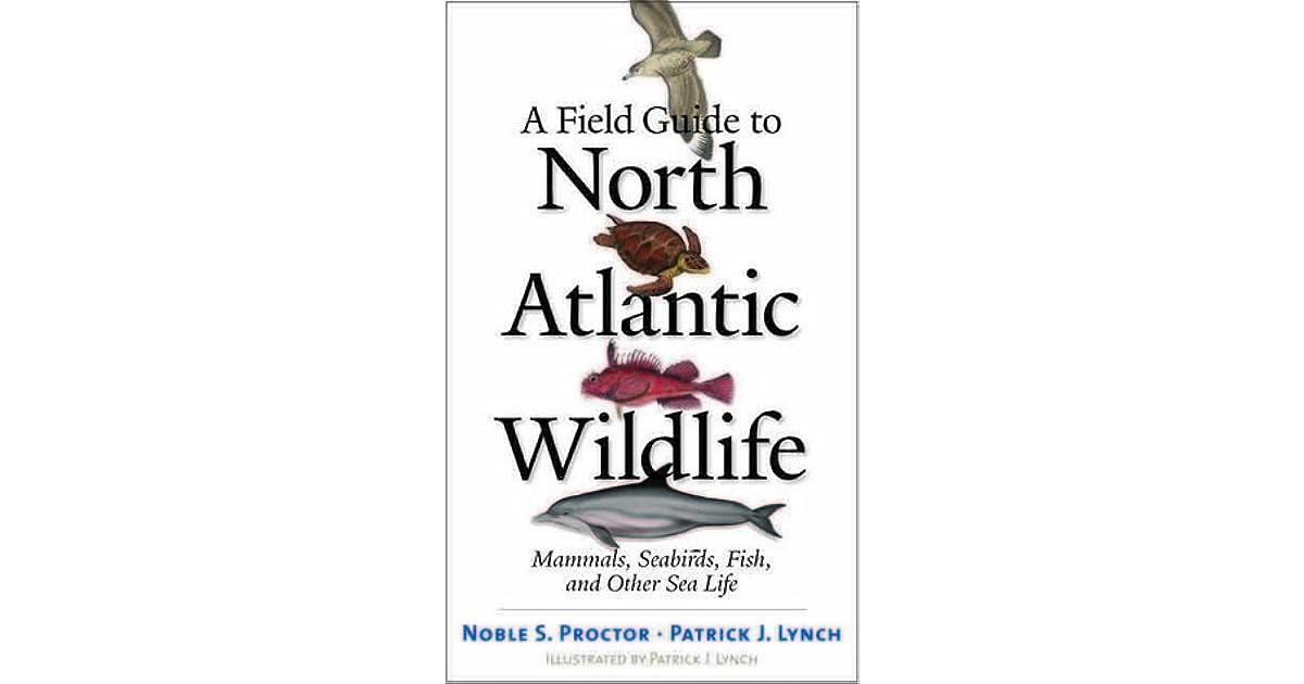 A Field Guide to North Atlantic Wildlife: Marine Mammals