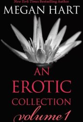 An Erotic Collection Volume 1: This is What I Want\Indecent Experiment\Everything Changes\Layover