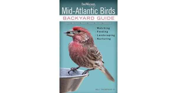 mid-atlantic birds backyard guide