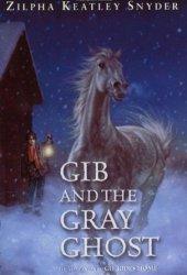 Gib and the Gray Ghost (Gib, #2)