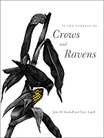 In the Company of Crows and Ravens by John M. Marzluff