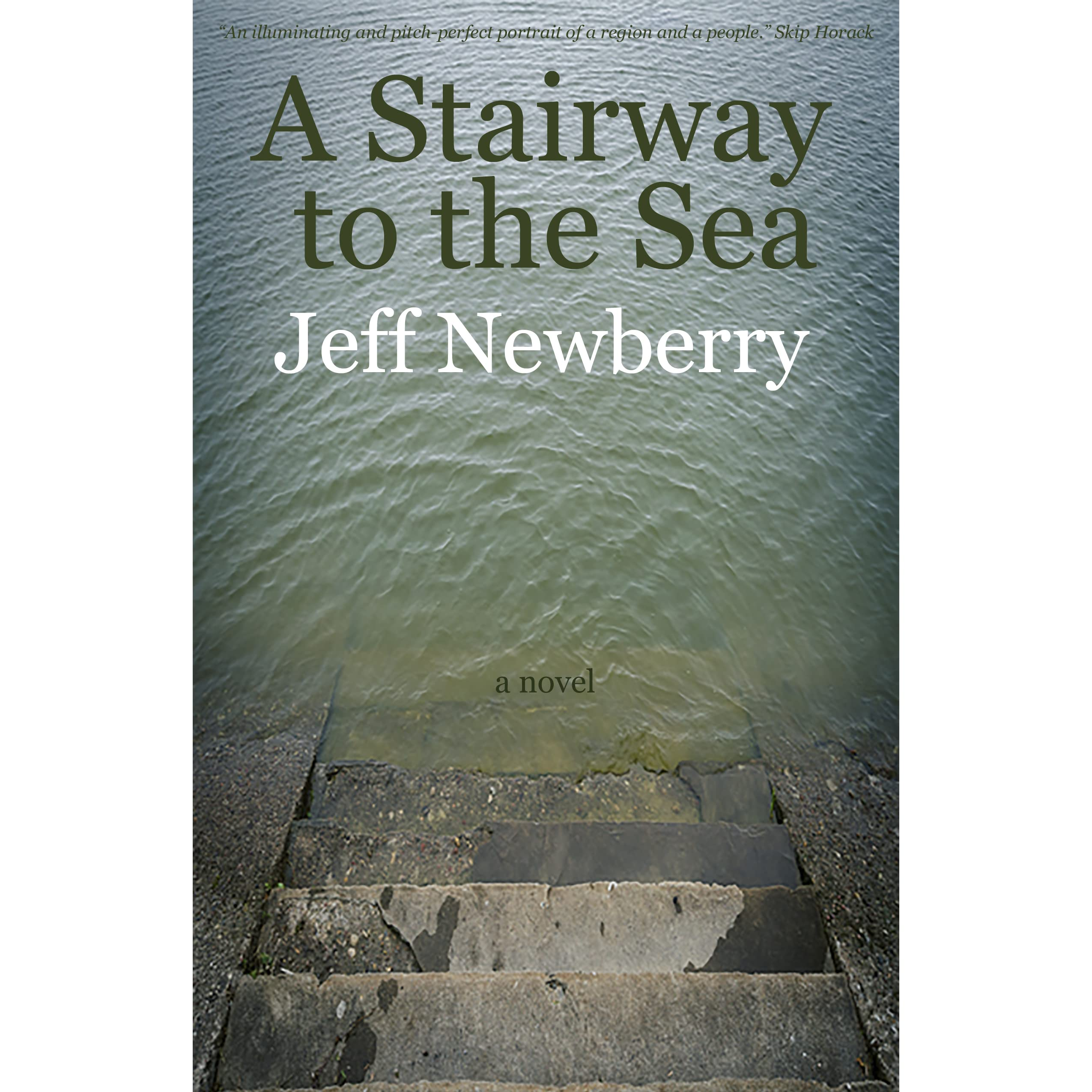 A Stairway to the Sea by Jeff Newberry  Reviews