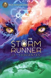the storm runner book cover