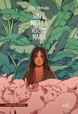 Non è mica la vergine Maria Book Cover