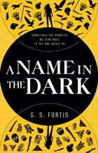 A Name in the Dark by G.S. Fortis