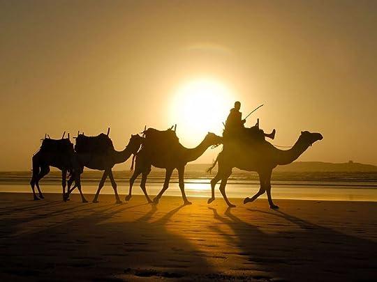 photo 38767632431b91b0c3fc6f9631842ada--exotic-places-camels_zpss18paitc.jpg