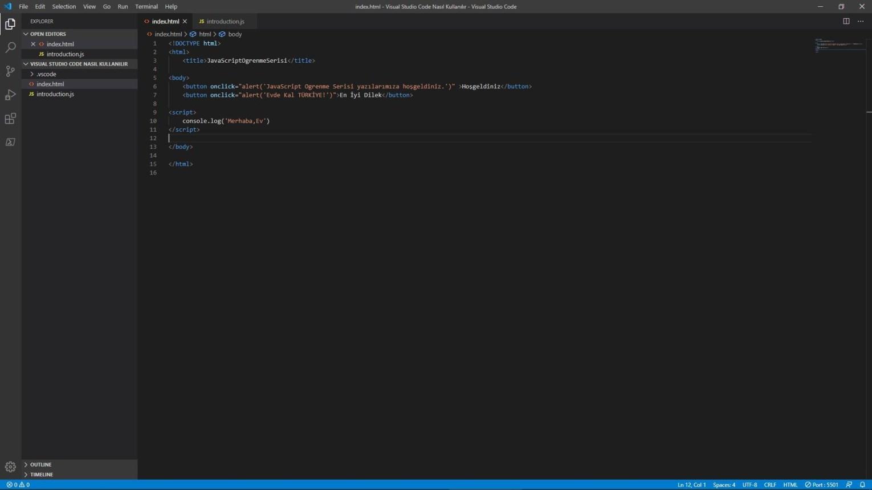Visual Studio Code index.html - JavaScript