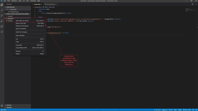 Visual Studio Code Live Server Start - JavaScript