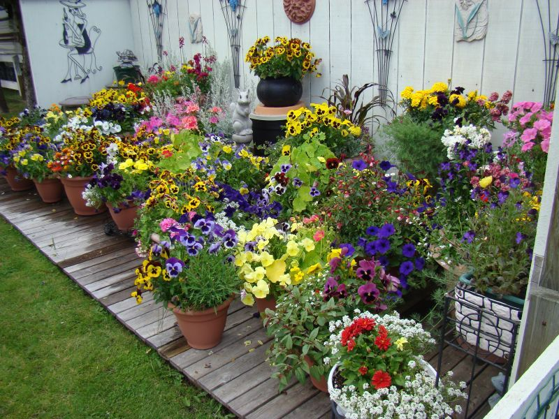 Create A Clever Container Garden Using An Old Wagon PHOTO HuffPost
