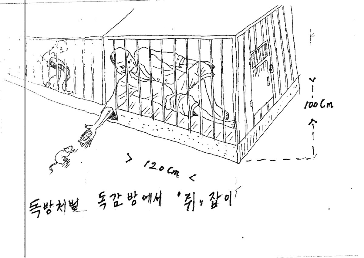 North Korea Torture Drawings Document Harsh Treatment In