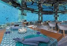 5 Tropical Hotel Pi Belli Del Mondo Secondo Trivago