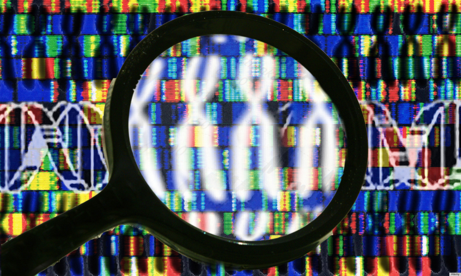 Human Genome Project Genome Project Human Human Genome