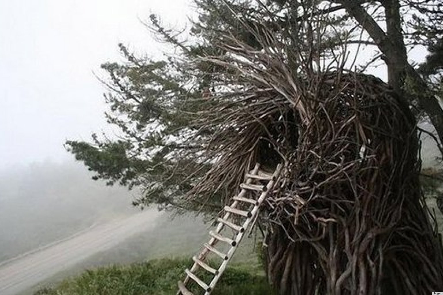 A Human Nest Is One Way To Save On Accommodation (PHOTOS