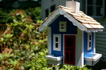 Amazing Birdhouses Home