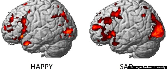 brain activity emotions