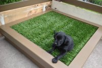 DIY Porch Potty Is The Ultimate Solution For City Dogs Or ...