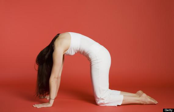 yoga cat pose