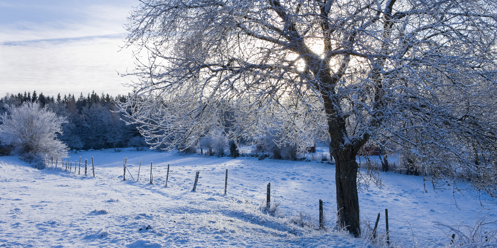Mac Pro Fall Wallpaper 2017 10 Winter Wonderlands To Energize Your Spirit Photos