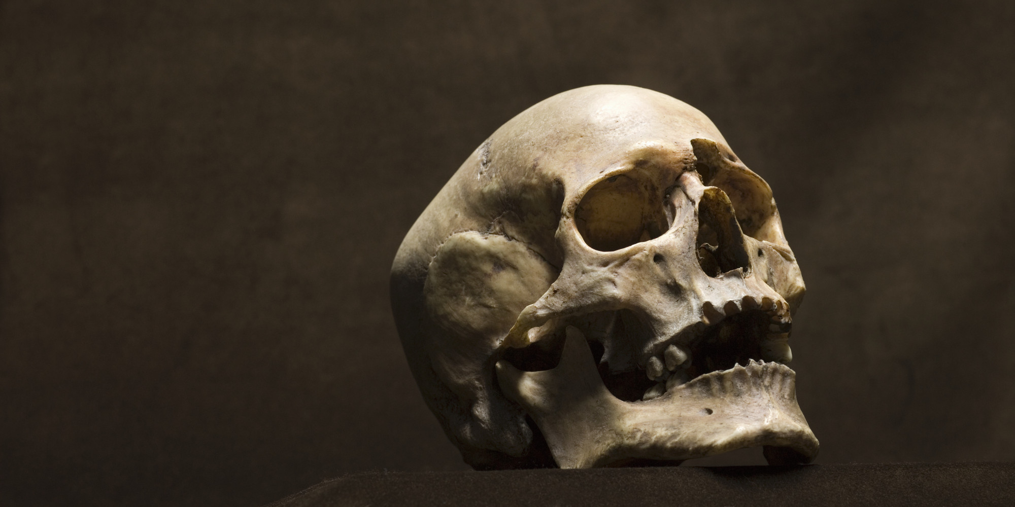 Human Skull On Paper Plate Found By Hikers In Oakland