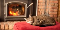 9 Unusual Ways To Keep Your Home Warm Without Turning Up ...