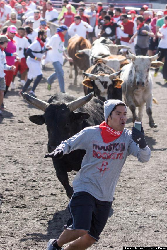 bull run selfie