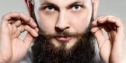 men grow beards show dominance