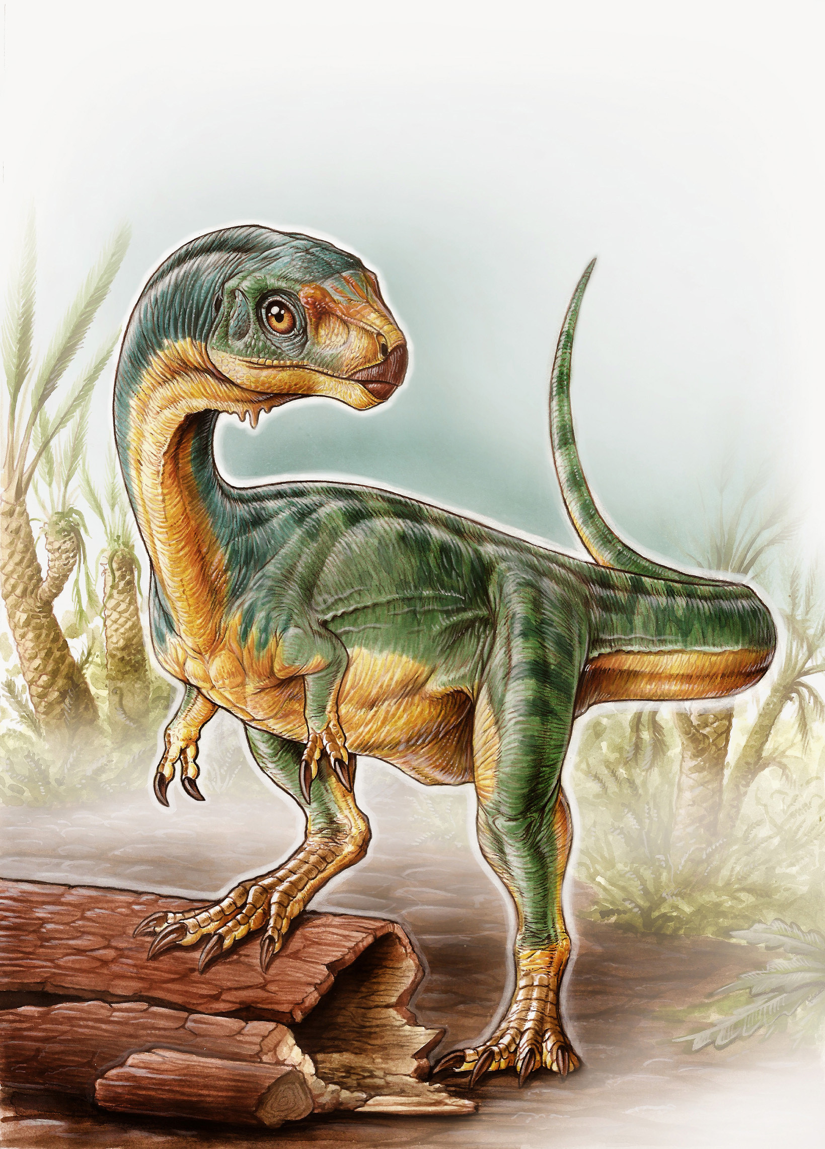Newly Discovered Dinosaur Is The T Rex S Vegetarian