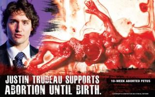 Resultado de imagen para pierre trudeau abortion