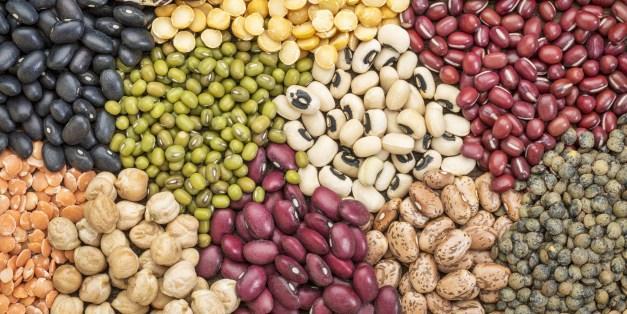 satvik food legumes