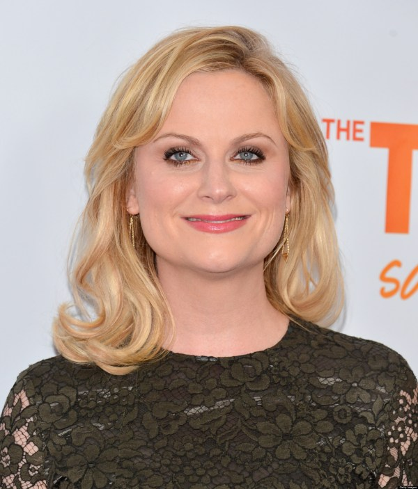 Amy Poehler 'parks And Recreation' Star Big Fear
