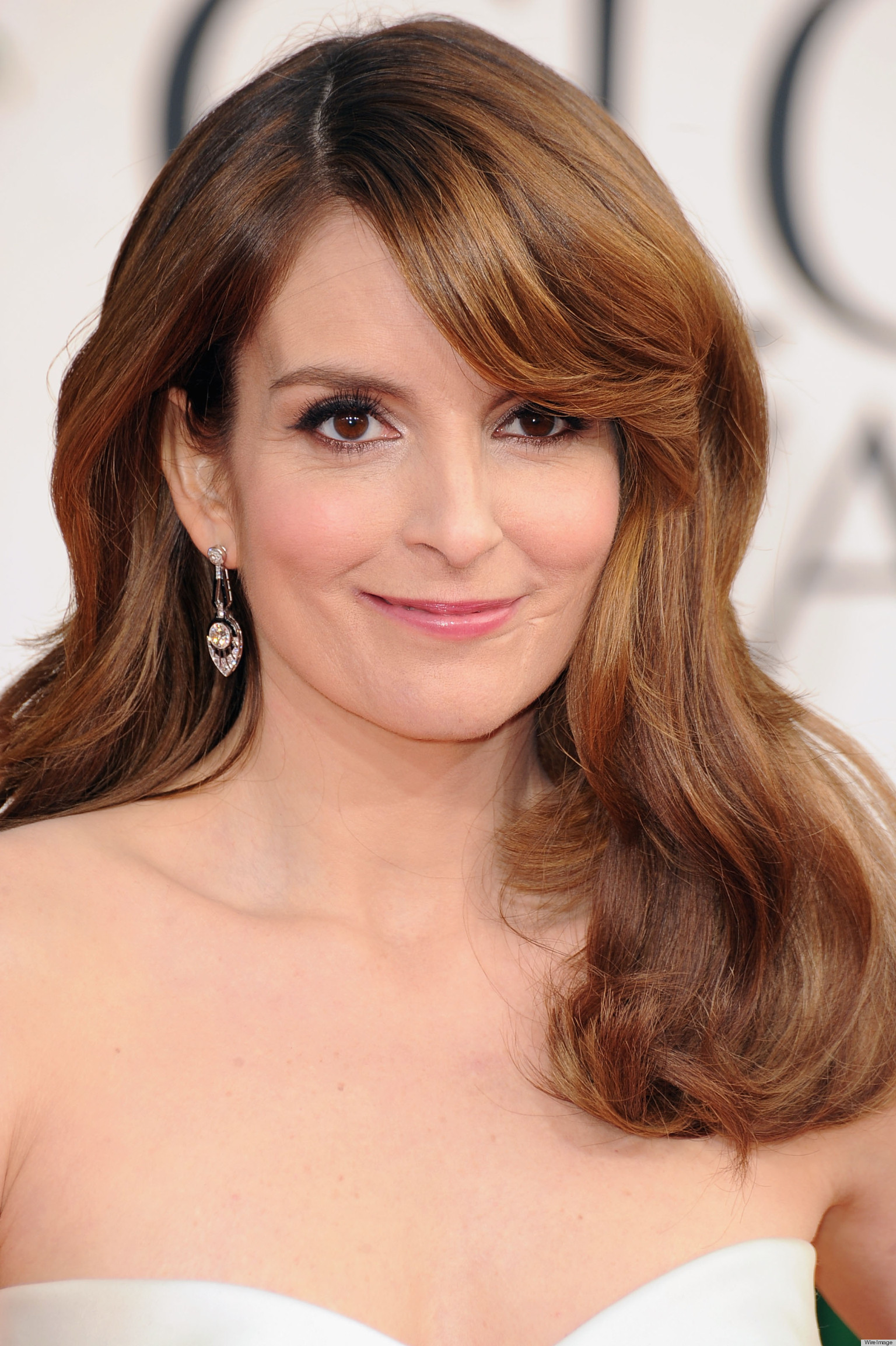 Tina Fey Golden Globes Dress 2013 See The Co Hosts