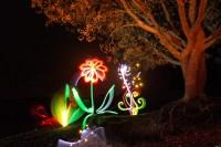 Light Artist Michael Bosanko's Lights Up Welsh Countryside