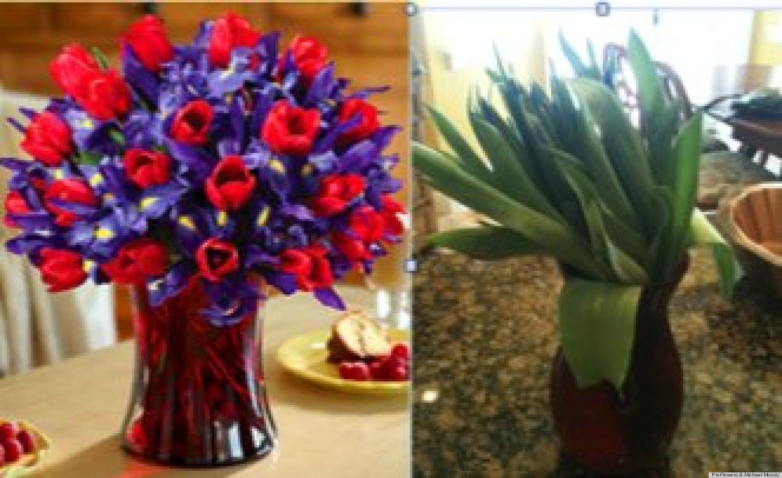 ProFlowers Receives Barrage Of Twitter Complaints