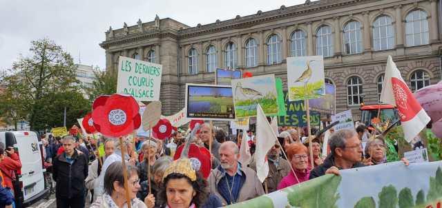 Masiva movilización ciudadana para reclamar una PAC para la agricultura y alimentación sostenible en Europa