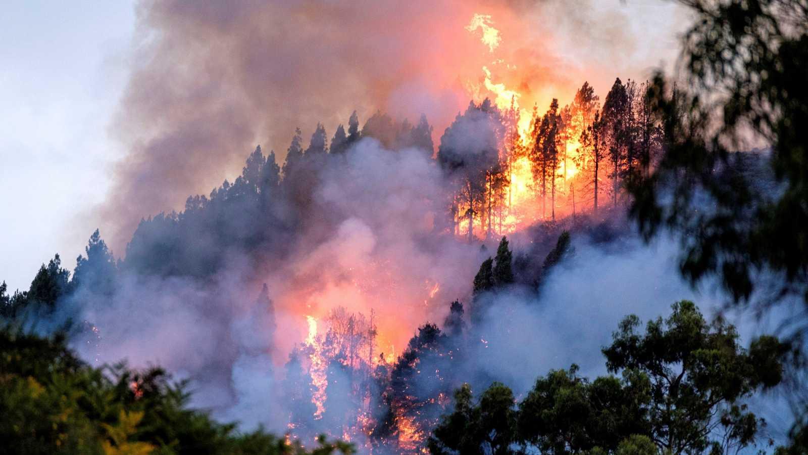 La sanción de la empresa pública Tragsa a un bombero forestal por hablar con la prensa es un ejemplo claro de represión