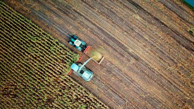 Transición agroecológica: un paso urgente y crucial para la lucha contra el cambio climático