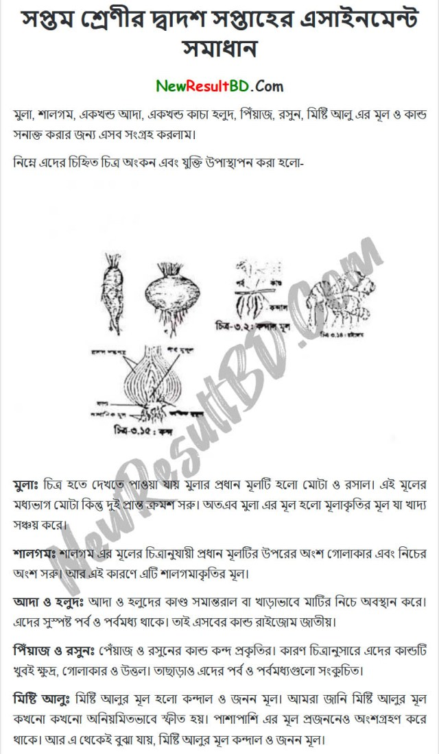 Class 7 Science 12th Week Assignment Answer