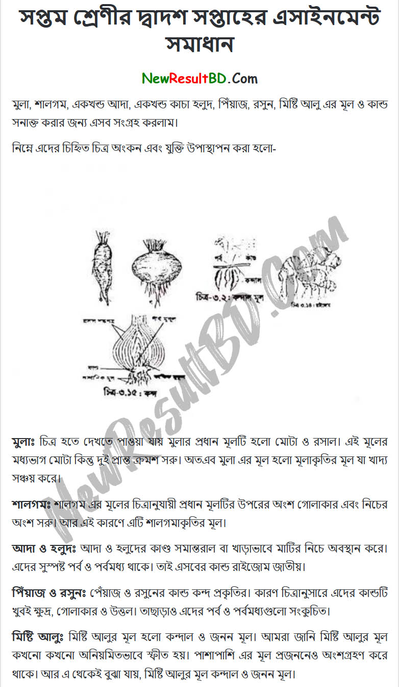 Class-7-Science-12th-Week-Assignment-Answer