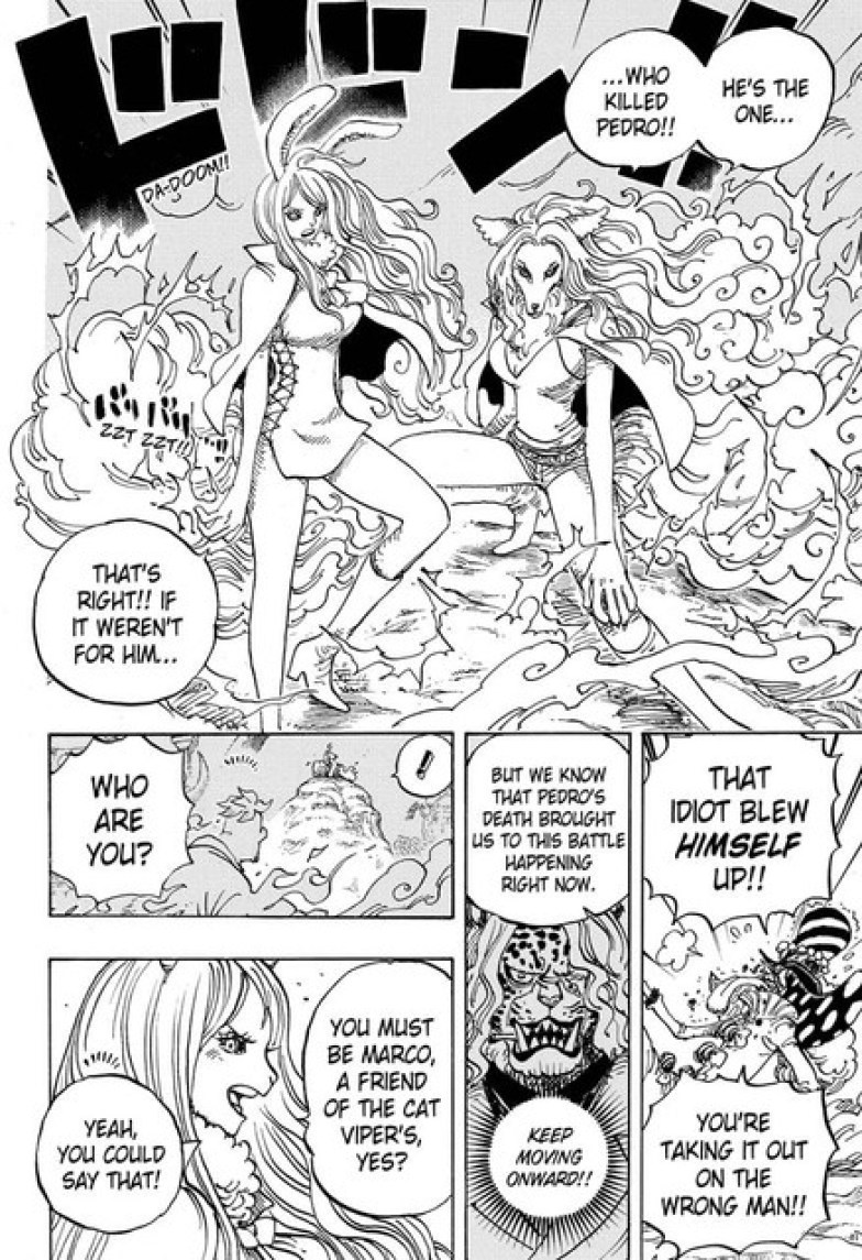 one-piece-chapter-995-5