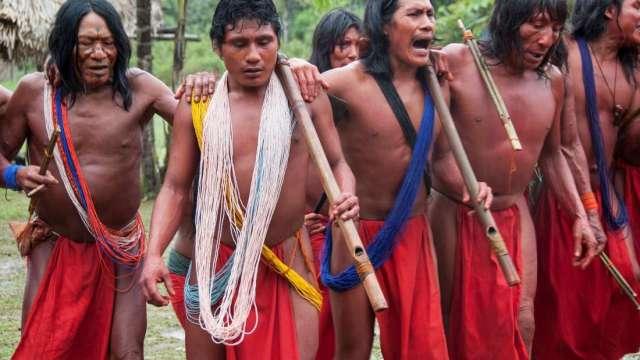 Ni una gota más: no más asesinatos de líderes indígenas en Brasil