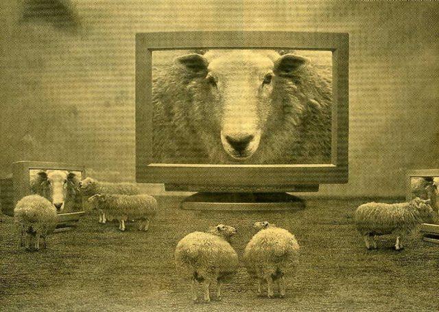 Teoría de la Desmoralización Inducida: La metástasis del individualismo si será televisada