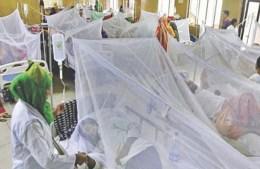 রাজধানীতে ২৪ ঘণ্টায় ৪৮ ডেঙ্গু রোগী শনাক্ত, হাসপাতালে ভর্তি