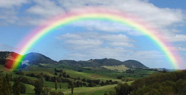 Rainbow-Bridge-Remembrance-Day