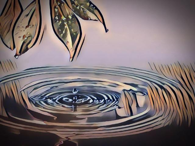 La Transición Hidrológica desde la Nueva Cultura del Agua